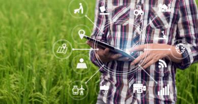 Investimento em tecnologia aumenta produtividade da safra agrícola